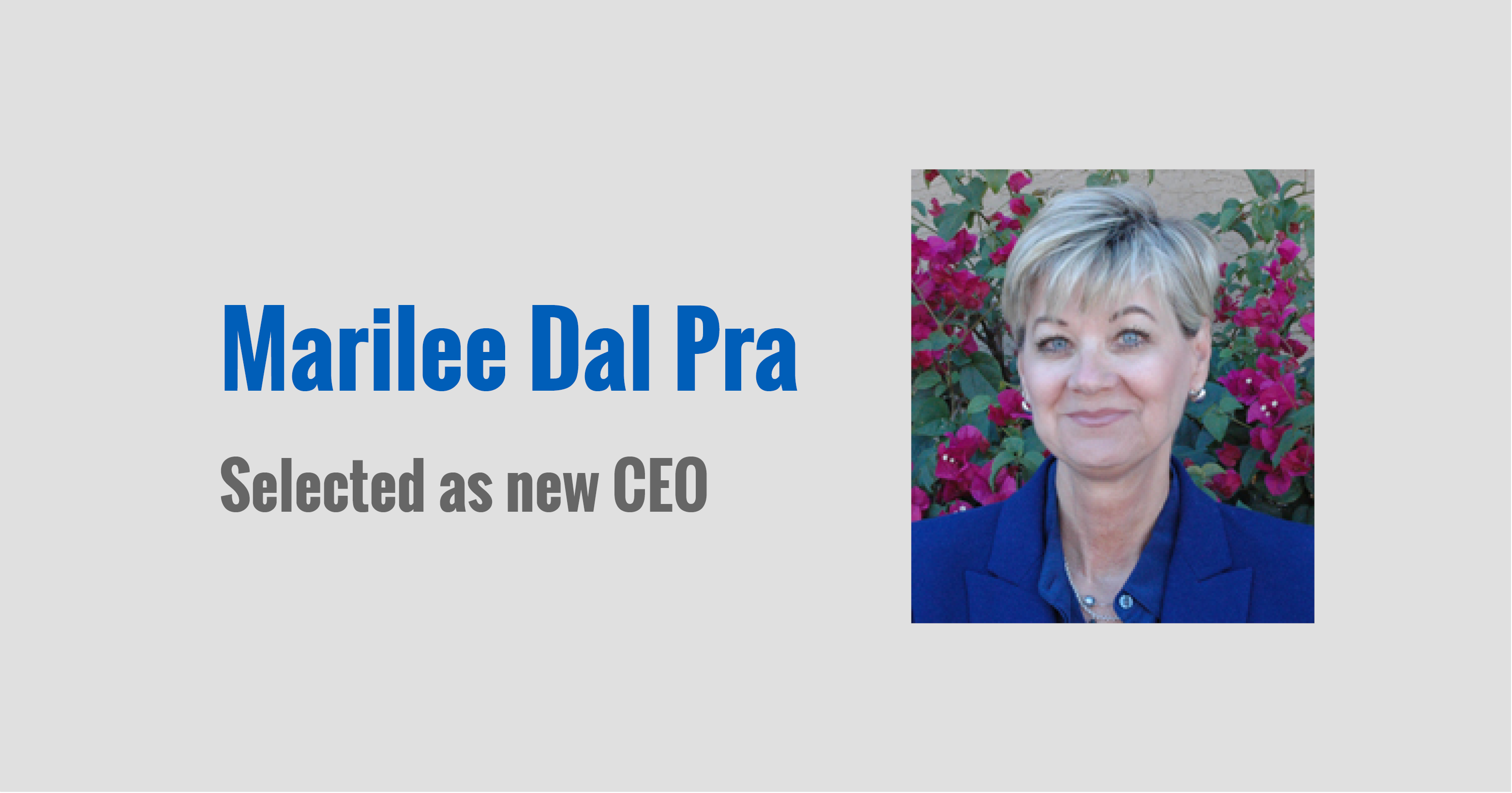 New CEO Marilee