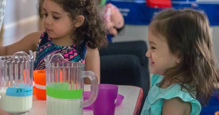 Five things you learn in kindergarten